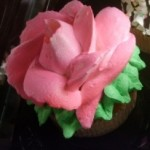 Giant Cupcake with pink Rose from Kroger's Bakery